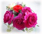 0222flower01